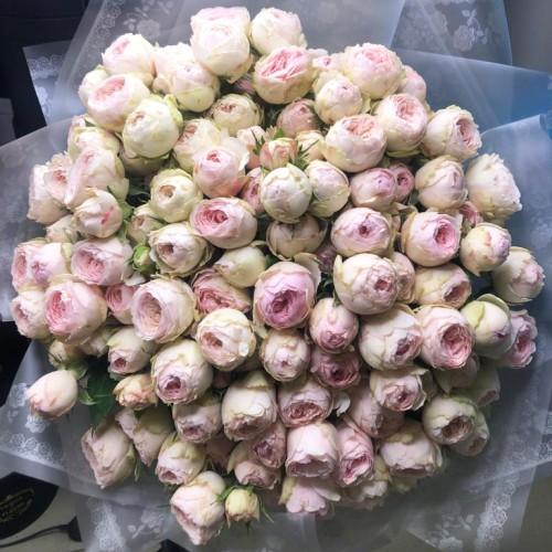 Купить на заказ Заказать 101 пионовидные розы с доставкой по Экибастузу с доставкой в Экибастузе