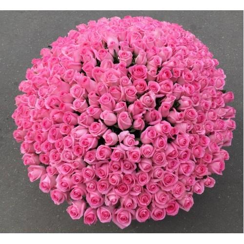 Купить на заказ Заказать 501  роза с доставкой по Экибастузу с доставкой в Экибастузе