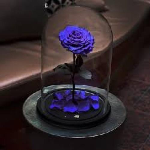 Купить на заказ Заказать Роза в колбе   фиолетовая с доставкой по Экибастузу с доставкой в Экибастузе