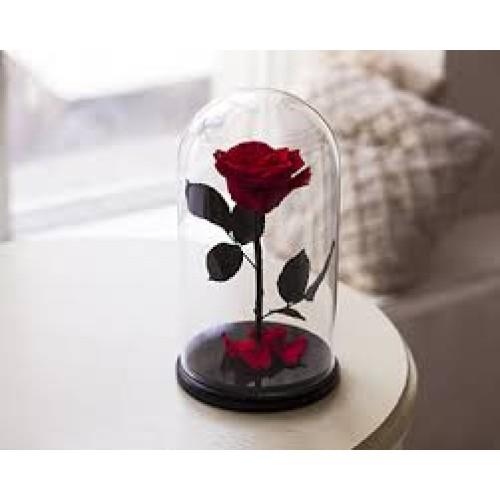 Купить на заказ Заказать Роза в колбе Красная с доставкой по Экибастузу с доставкой в Экибастузе